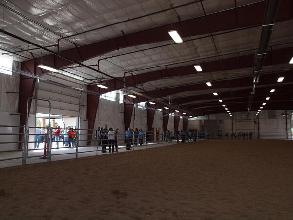 Hands of Promise Equine Therapy Center