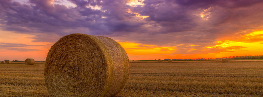 feature-hay-bale-1050x390